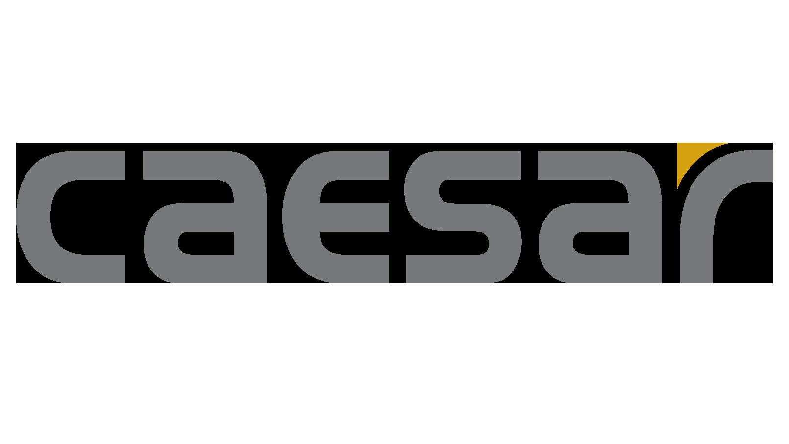 Caesar Logo Grey copy