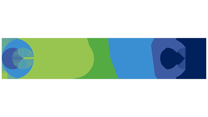 Damco Logo copy